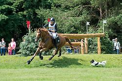 Despontin Julien, (BEL), Waldano 36   <br /> Cross country - CCI4* Luhmuhlen 2016<br /> © Hippo Foto - Jon Stroud<br /> 18/06/16