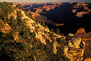 Grand Canyon at sunrise from Yaki Point, Grand Canyon National Park, Arizona..Subject photograph(s) are copyright Edward McCain. All rights are reserved except those specifically granted by Edward McCain in writing prior to publication...McCain Photography.211 S 4th Avenue.Tucson, AZ 85701-2103.(520) 623-1998.mobile: (520) 990-0999.fax: (520) 623-1190.http://www.mccainphoto.com.edward@mccainphoto.com.