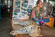 07 JANUARY 2013 - KANCHANABURI, THAILAND:   A sedated leopard sleeps in the mid day heat at a stand that attracts tourists in Kanchanaburi, Thailand. Animal rights' groups protest against the use of animals as entertainment but they have had only marginal help in Thailand.       PHOTO BY JACK KURTZ