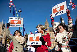 © Licensed to London News Pictures. 14/02/2019. London, UK. Brexit supporters with placards outside the Palace of Westminster. MPs continue to debate Brexit in Parliament, and will vote on a series of amendments today. Photo credit: Rob Pinney/LNP