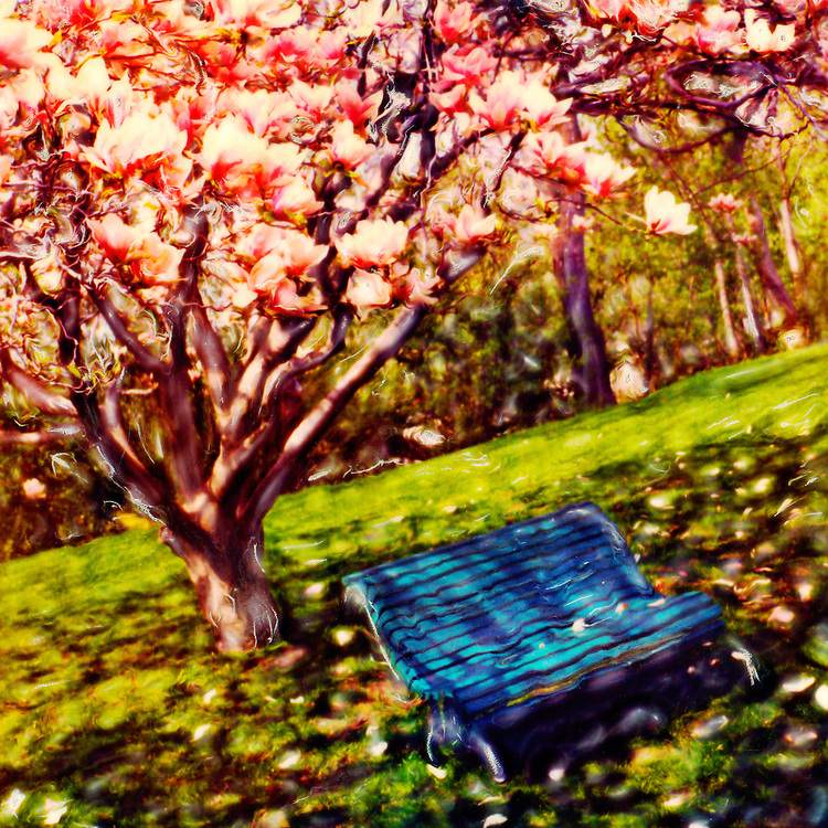 Magnolia & Bench, Eldon House, London Ontario
