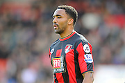 AFC Bournemouth forward Callum Wilson during the Barclays Premier League match between Bournemouth and Liverpool at the Goldsands Stadium, Bournemouth, England on 17 April 2016. Photo by Graham Hunt.