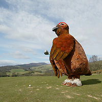 'The Grouse' mascot of the Famous Grouse Experience, Glenturret Distillery, Crieff, pictured on the golf course of the Crieff Hydro Hotel<br />