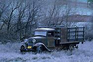 Winter frost and old truck in field, Pleasant Valley, Sierra Foothills, El Dorado County, California