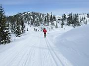 Crosscountry skiing in Norway.