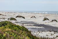 The Atlantic ocean along the beaches and sand dunes of Assateague Island National Seashore, Maryland, USA.