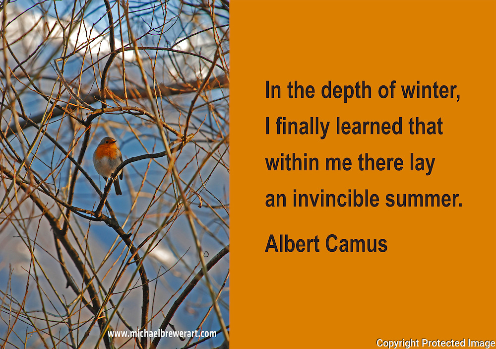 Quote:  In the depth of winter, I finally learned that within me there lay an invincible summer.  By Albert Camus.  Meme.