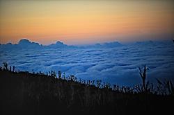 18-10-2008 REPORTAGE: KILIMANJARO CHALLENGE 2008: TANZANIA <br /> Opweg naar Shira plateau op 3850 meter. De Kilimanjaro Challenge van de BvdGf.<br /> &copy;2008-FotoHoogendoorn.nl