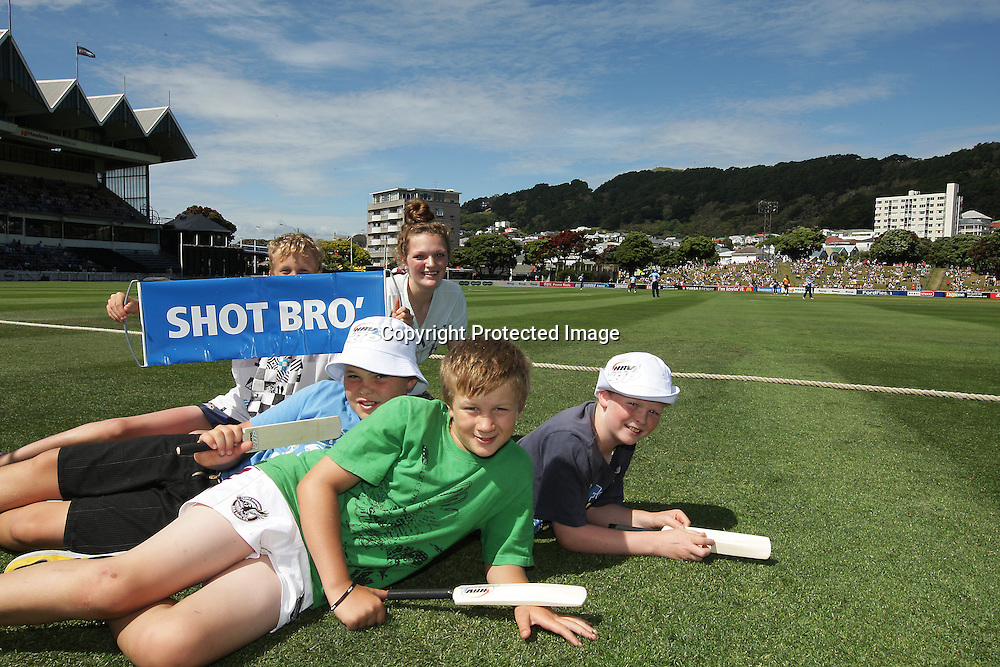 Fans during their Twenty20 Cricket match - HRV Cup, Wellington Firebirds v Auckland Aces, 28 December 2011, Hawkins Basin Reserve, Wellington. . PHOTO: Grant Down / photosport.co.nz