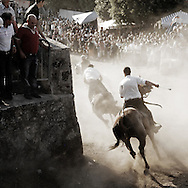 Barbagia is a large mountainous area in the central-eastern part of the Italian island Sardinia with beautiful nature and little isolated villages where people still lives respecting traditions working most of sheep-farming and breeding. One of these villages is Sedilo, where every year on July 6th a hundred of the best, most daring and brave horse riders participate in a wild and unrestrained race; S'ardia.<br /> They don't run for money or glory but to show their devotion to a warrior saint, Saint Constantine. Actually he is not a saint according to the Vatican Church that never approved him, but he is to Sedilo&rsquo;s people, who celebrate his deeds and courage in defending the weak.<br /> Riders races down the hill at full gallop, pounding towards the narrow entrance below the Arc of Constantine amid rifle shots and clouds of dust, the speed is crazy and a mistake can be lethal. It has been, many times, the last death occured in 2009. <br /> The dust filled air, harsh with the smell of gunpowder and the crowd' s frenzy bring Sedilo and it's devout inhabitants back to a time long gone.