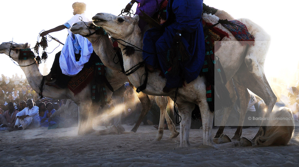 Tuareg men with their camels in Timbuktu during the 2010 edition of the Festivla au Désert