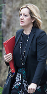 Energy Secretary Amber Rudd arrives at the UK Cabinet meeting at Downing Street, London.<br /> Picture by Paul Davey/Focus Images Ltd +447966 016296<br /> 08/03/2016