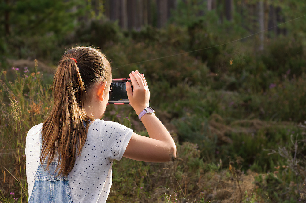 Photographing a spider's web, Torrieston, Aberdeenshire and Moray Forest District, Forestry Commission Scotland