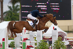 Candele Yann (CAN) - Lansdowne<br /> Horseware GP CSI 2*<br /> Wellington 2012<br /> © Hippo Foto - Cealy Tetly