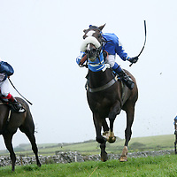 at the annual Lisdoonvarna Races at the weekend.<br />