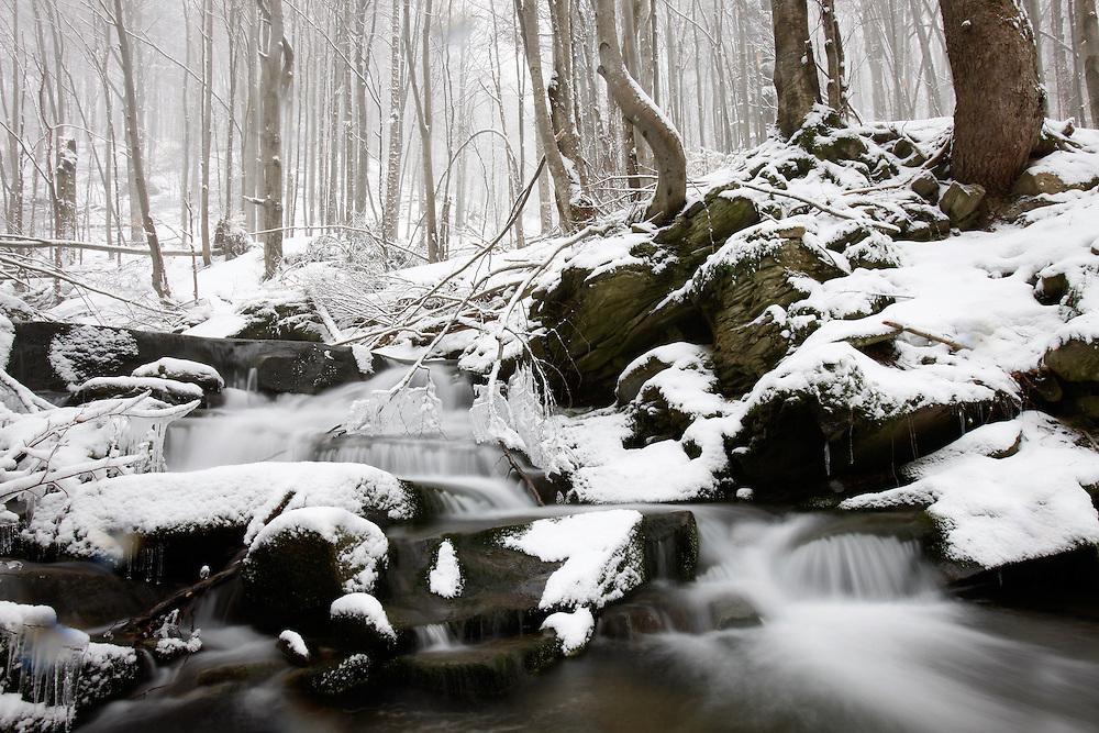 Tworylczyk Stream, Bieszczady National Park, Poland