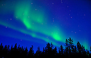 Northern Lights and Night Skies