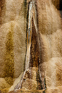 Beautifully colored and textured mineral forms created by Orange Spring Mound, an active hot spring that is part of Mammoth Hot Spring, Yellowstone National Park, WY, © 2005 David A. Ponton