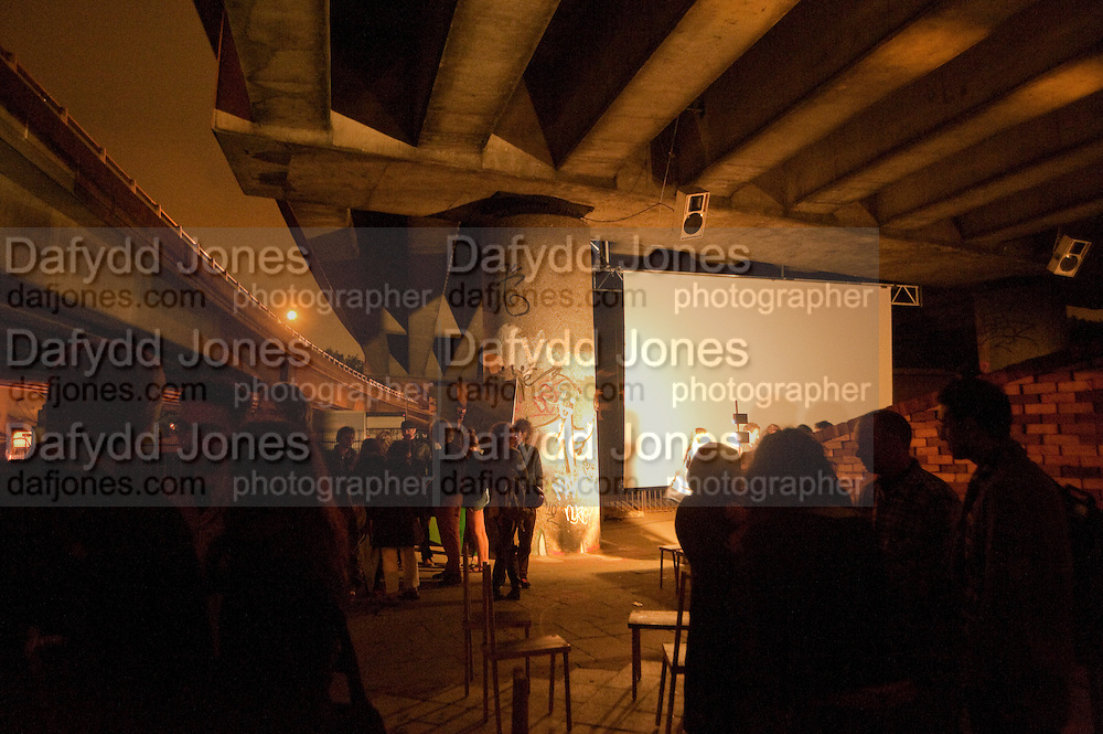 The opening night -  FOLLY FOR A FLYOVER conceived and built by Assemble. Winner of the Bank of America Merrill Lynch award 2011. Hackney Wick. London. 23 June 2011. <br /> <br />  , -DO NOT ARCHIVE-© Copyright Photograph by Dafydd Jones. 248 Clapham Rd. London SW9 0PZ. Tel 0207 820 0771. www.dafjones.com.