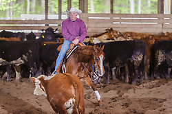May 20, 2017 - Minshall Farm Cutting 3, held at Minshall Farms, Hillsburgh Ontario. The event was put on by the Ontario Cutting Horse Association. Riding in the Ranch Class is Maurice Price on Smart Tari What owned by the rider.