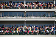Fans show up in droves to watch Kentucky Derby contenders gallops at Churchill Downs in Louisville, KY on May 02, 2013. (Alex Evers/ Eclipse Sportswire)