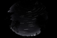 Night Sky Over New Jersey. Composite of images (02:00-02:59)  taken with a Nikon D850 camera and 8-15 mm fisheye lens (ISO 800, 10 mm, f/5.6, 30 sec).