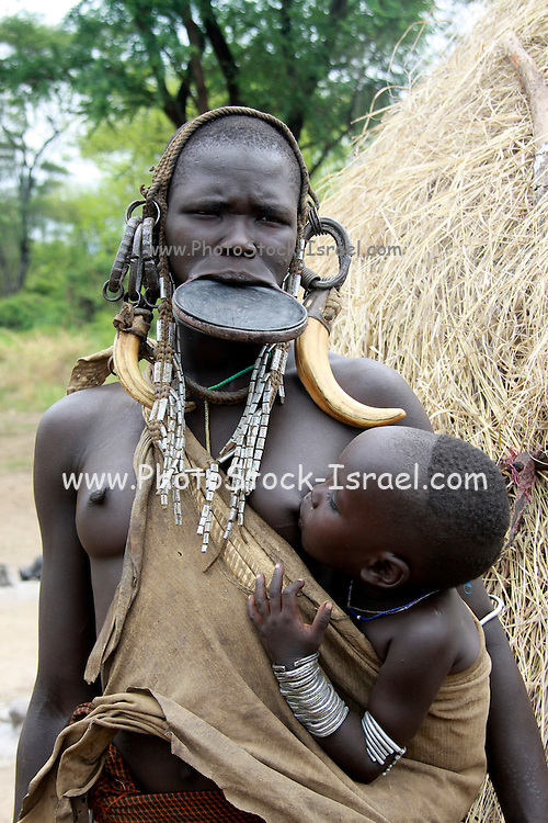 Africa, Ethiopia, Debub Omo Zone, Mursi tribesmen. A nomadic cattle herder ethnic group located in Southern Ethiopia, close to the Sudanese border. Woman with clay lip disc as body ornaments breast feeds her baby