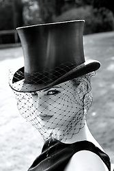 Young Woman in Top Hat and Veil
