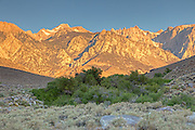 The Sierra Crest just south of Lone Pine.  Is Mt. Whitney in this image?