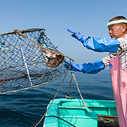 Hasegawa-san setting crab traps for deep-sea king crabs in Suruga Bay. Here he is throwing a newly baited trap into the water as part of a series of twenty connected traps.