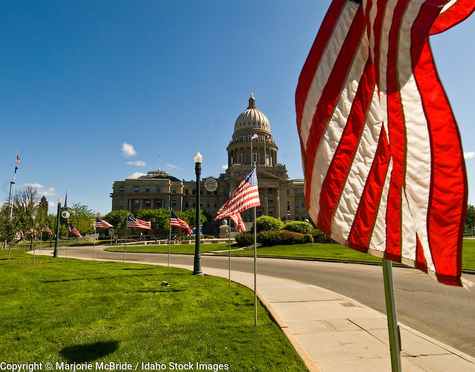 United States flags waving in the wind and lining the way to the Capitol building in Boise, Idaho.