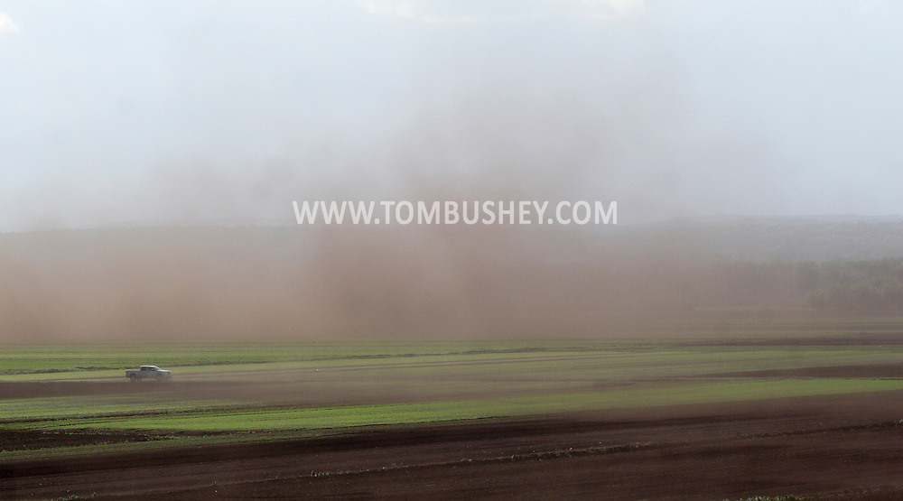 Goshen, New York - A pickup truck drives through a dust storm as strong winds carry soil into the air over farmers' fields in the Black Dirt region of Orange County on May 8, 2010. Winds gusted at up to 40 miles per hour.