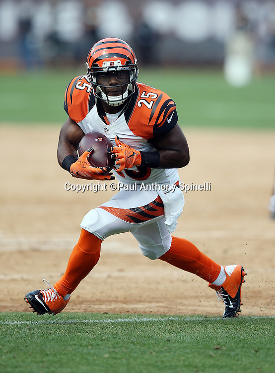 Cincinnati Bengals running back Giovani Bernard (25) looks for running room after catching a second quarter pass in the flat during the 2015 NFL week 1 regular season football game against the Oakland Raiders on Sunday, Sept. 13, 2015 in Oakland, Calif. The Bengals won the game 33-13. (©Paul Anthony Spinelli)