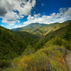 Overlooking the Santa Ana Mountains and Santiago Peak from the Trabuco Canyon Trail. Cleveland National Forest, CA.