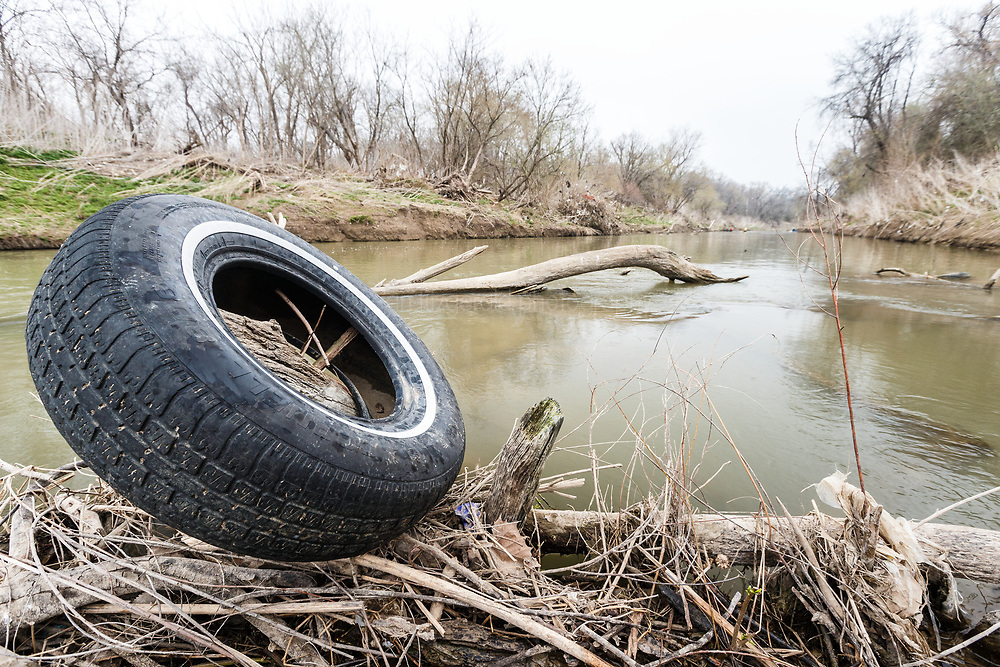 Tire stuck on branches in middle of the Trinity River, Great Trinity Forest, Dallas, Texas, USA