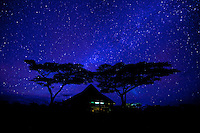 Milky Way over a safari camp and acacia trees, Serengeti