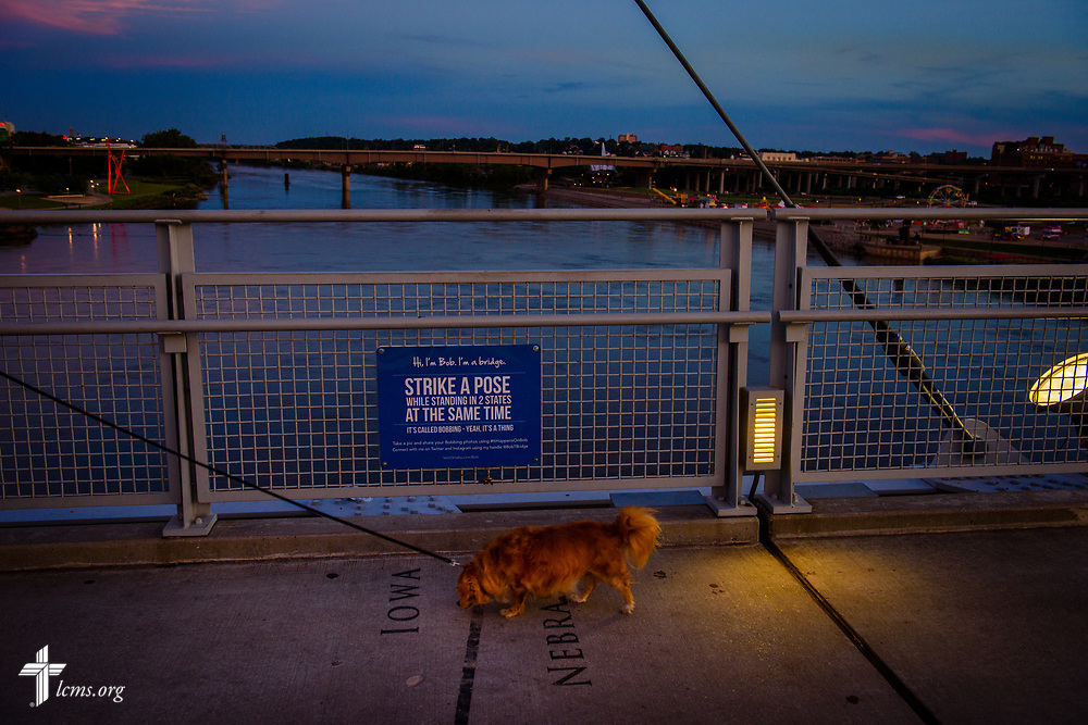 A dog is walked past the border of Nebraska into Iowa on the Bob Kerrey Pedestrian Bridge on Tuesday, June 6, 2017. LCMS Communications/Erik M. Lunsford