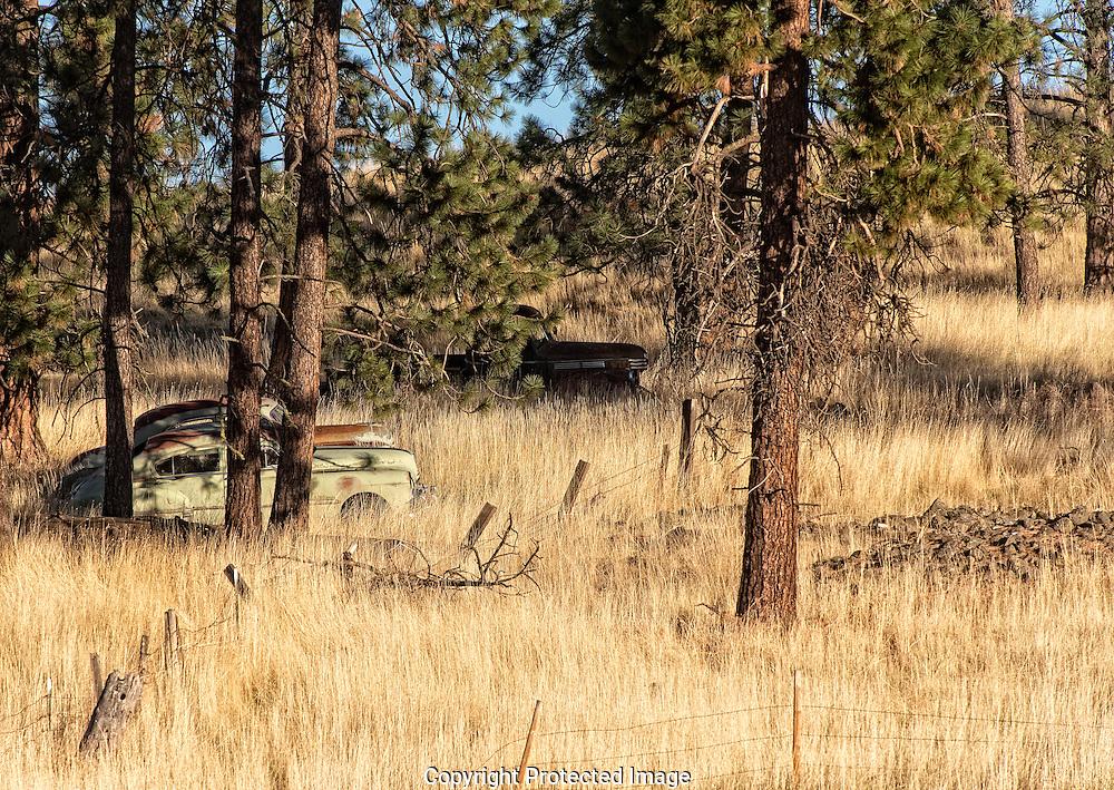 Hunters, WA., Washington, America, Isobel Springett