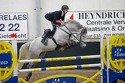 Hanlon Roy, BEL, Neverland Z<br /> Finale Hengstencompetitie 5 jarige<br /> Hengstenkeuring BWP<br /> 3de phase - Hulsterlo - Meerdonk 2018<br /> © Hippo Foto - Dirk Caremans
