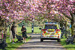 © Licensed to London News Pictures. 09/04/2020. London, UK. Police officers on patrol in a car speaks to two women in Greenwich Park beneath a row of blossoming cherry trees. The government has asked that people continue to remain indoors over the Easter Weekend. Photo credit: Rob Pinney/LNP