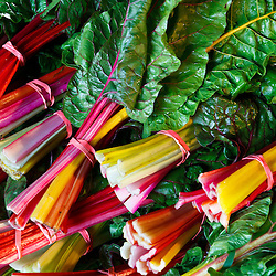 Swiss chard at the Community Supported Agriculture (CSA) pick-up at the Crimson and Clover Farm in Northampton, Massachusetts.