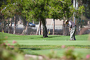 Golfing on the Putting Green at Cerritos Iron-Wood Golf Course