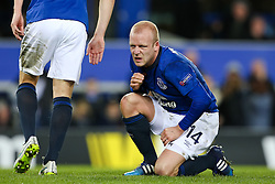 Everton's Steven Naismith reacts after being fouled for the penalty - Photo mandatory by-line: Matt McNulty/JMP - Mobile: 07966 386802 - 26/02/2015 - SPORT - Football - Liverpool - Goodison Park - Everton v Young Boys - UEFA EUROPA LEAGUE ROUND OF 32 SECOND LEG