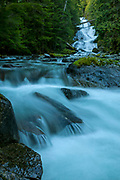 Chenuis Falls drops 285 feet (87 meters) in a couple of tiers before flowing into the Carbon River in Mount Rainier National Park, Washington.