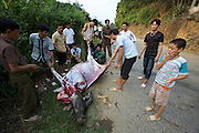 Da River valley. Men cutting up a slaughtered water buffalo, possibly injured or killed in a road accident.