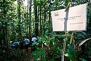 Porto Seguro_BA, Brasil...Reserva Particular do Patrimonio Natural (RPPN) em Porto Seguro, Bahia...The Private Reserve of Natural Heritage (RPPN) in Porto Seguro, Bahia...Foto: JOAO MARCOS ROSA / NITRO