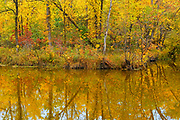 Autumn colors in Seine River Forest.<br />