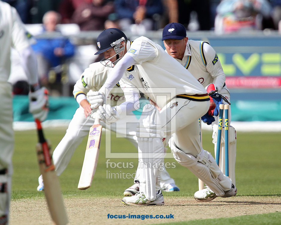 Picture by Paul Gaythorpe/Focus Images Ltd +447771 871632.24/04/2013.Callum Thorpe of Durham County Cricket Club is bowled by Adil Rashid of Yorkshire County Cricket Club (not in picture) during the LV County Championship Div One match at Emirates Durham ICG, Chester-le-Street.