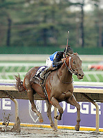 Curlin leading the Breeders Cup 2007 World Championships