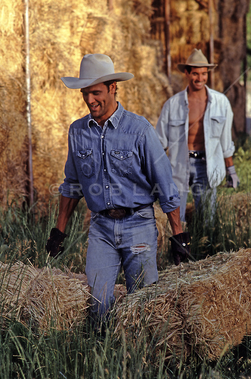cowboys working in a barn filled with hay